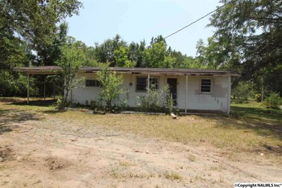 61 Chimney Rock Road, Union Grove, AL 35175 - #: 1101061
