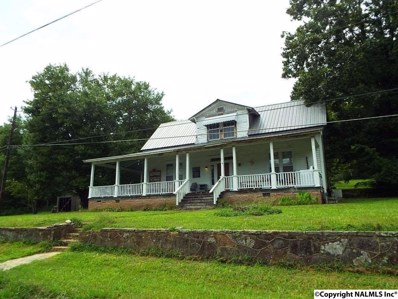 7181 Highway 137, Valley Head, AL 35989 - #: 1101135