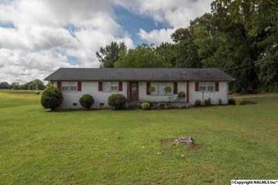 113 Old Quick Road, Fayetteville, TN 37334 - #: 1101158
