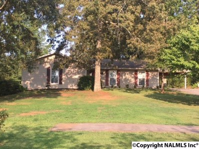 4020 Mountain Valley Road, Decatur, AL 35603 - #: 1101181
