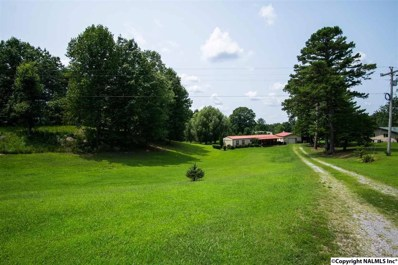 607 Hytop Road, Scottsboro, AL 35768 - #: 1101369