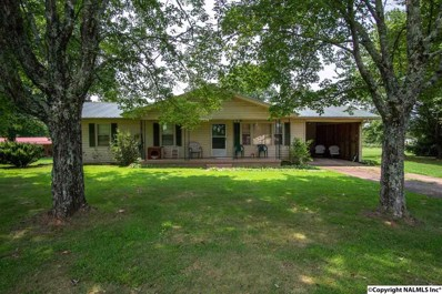 645 Hytop Road, Scottsboro, AL 35768 - #: 1101370