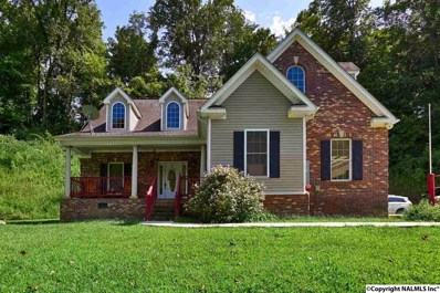 500 Indian Creek Road, Pulaski, TN 38478 - #: 1101504