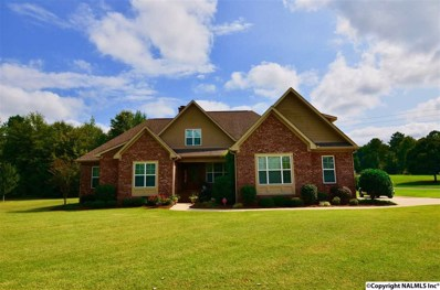 204 Woodland Cove Lane, Rainbow City, AL 35906 - #: 1101565
