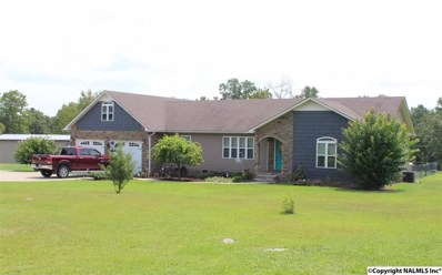 525 County Road 109, Fort Payne, AL 35967 - #: 1101618