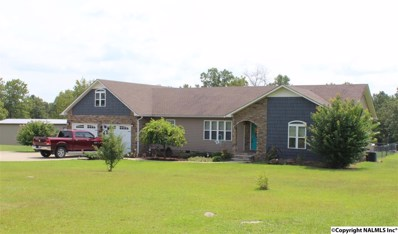 525 County Road 109, Fort Payne, AL 35967 - #: 1101622