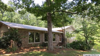 3461 Creek Circle, Guntersville, AL 35976 - #: 1101953