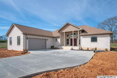 407 Barbee Lane, Scottsboro, AL 35769 - #: 1101955