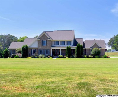 863 Rountree Place, Huntsville, AL 35756 - #: 1102005