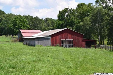 2199 County Road 138, Scottsboro, AL 35768 - #: 1102132