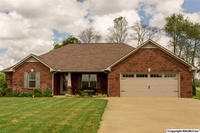 28397 Ferguson Lane, Toney, AL 35773 - #: 1102134