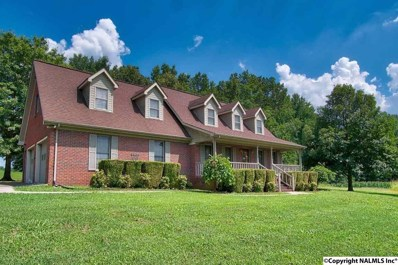 20 Berryhill Lane, Fayetteville, TN 37334 - #: 1102138