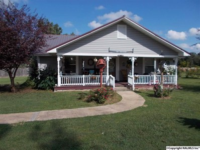 223 Hill Road, Boaz, AL 35957 - #: 1102193