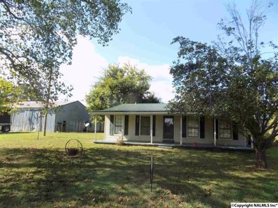 396 Turtle Creek Road, Somerville, AL 35670 - #: 1102216