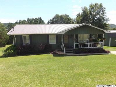 919 Walker Drive, Glencoe, AL 35905 - #: 1102265