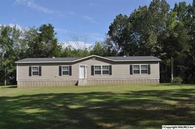 987 County Road 610, Rogersville, AL 35652 - #: 1102298