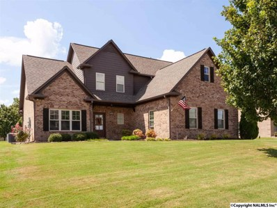 22715 Bluffview Drive, Athens, AL 35613 - #: 1102319