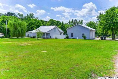309 Nelson Hollow Road, Somerville, AL 35670 - #: 1102365