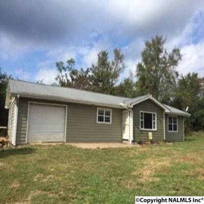 324 Lawson Road, Guntersville, AL 35976 - #: 1102457