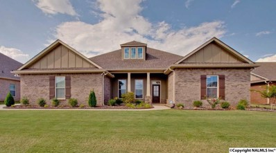 113 Mary Caudle Way, Madison, AL 35756 - #: 1102475
