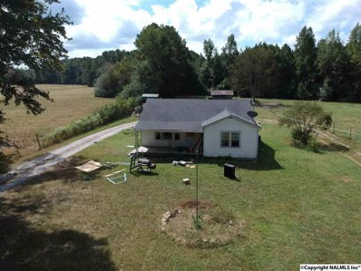 718 Maple Road, New Hope, AL 35760 - #: 1102535