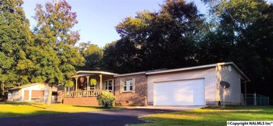 4936 County Road 121, Fort Payne, AL 35968 - #: 1102575