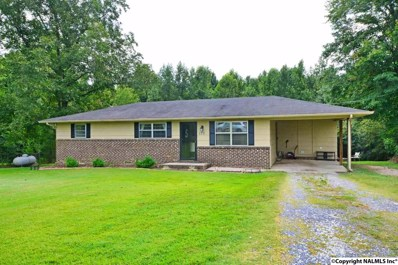 170 Meadow Drive, Holly Pond, AL 35083 - #: 1102632