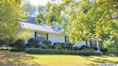 700 Merit Springs Road, Gadsden, AL 35901 - #: 1102661
