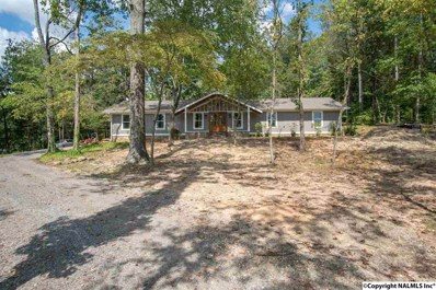 1039 Snodgrass Road, Scottsboro, AL 35769 - #: 1102679