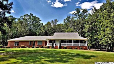 479 Pleasant View Road, Falkville, AL 35622 - #: 1102693