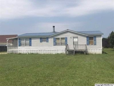 384 Scott Road, Toney, AL 35773 - #: 1102698