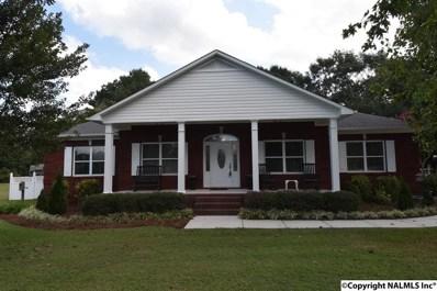 141 Lilac Circle, Guntersville, AL 35976 - #: 1102724