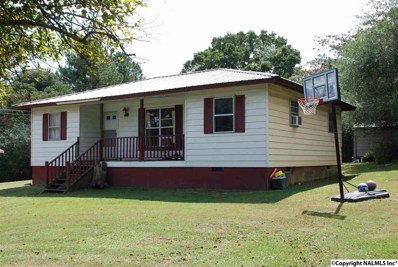 308 Travis Road NW, Fort Payne, AL 35967 - #: 1102847