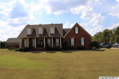 256 Manley Road, Hazel Green, AL 35750 - #: 1102865
