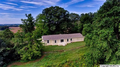 280 Grigsby Road, Prospect, TN 38477 - #: 1102886