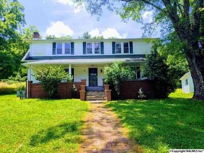 4011 Minor Hill Hwy, Pulaski, TN 38478 - #: 1102924