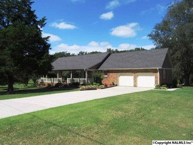 99 Ryan Crest Lane, Decatur, AL 35603 - #: 1102929