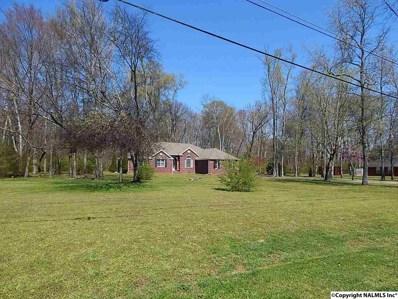 119 Erle Phillips Road, Huntsville, AL 35806 - #: 1103081