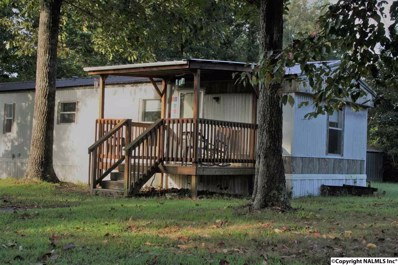 115 County Road 698, Flat Rock, AL 35966 - #: 1103115