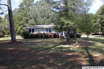 4236 Broad Street S, Scottsboro, AL 35768 - #: 1103149