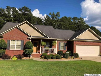 116 Deer Valley Parkway, Rainbow City, AL 35906 - #: 1103235
