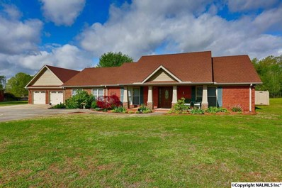 312 Chipmunk Circle, New Market, AL 35761 - #: 1103251