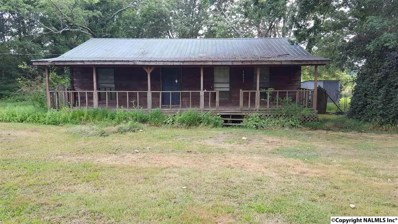 12 Baker Mountain Road, Grant, AL 35747 - #: 1103295