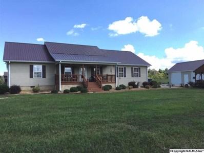 1448 Alabama Hwy 205, Albertville, AL 35950 - #: 1103360