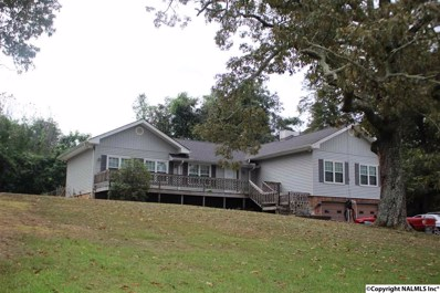 702 Ehrich Avenue, Bridgeport, AL 35740 - #: 1103415