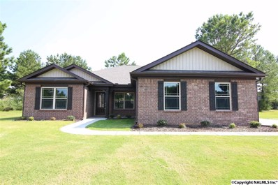 110 Beaver Brook Place, Toney, AL 35773 - #: 1103438