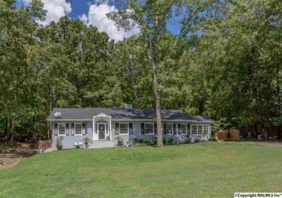2507 Vista Drive, Huntsville, AL 35803 - #: 1103525
