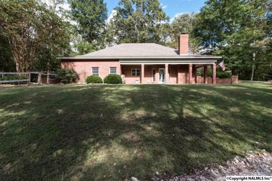 20970 Little Tom Road, Athens, AL 35614 - #: 1103531