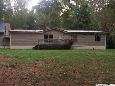 498 Fox Run Road, Horton, AL 35980 - #: 1103620