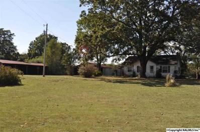 967 County Road 93, Anderson, AL 35610 - #: 1103650